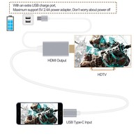 Type C to HDMI, 6ft USB Type C to HDMI Cable 4K@60HZ(Thunderbolt 3 Compatible) for 2017/2016 Macbook Pro, iMac2017, 2015 New Macbook, ChromeBook Pixel, Galaxy S8/S8+/Note 8 and More (Silver)